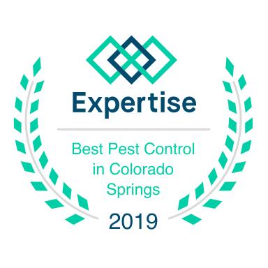 About - Why-U-Buggin Pest Control in Colorado Springs